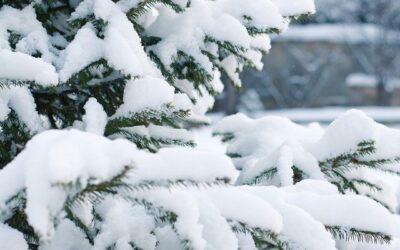Miért érdemes télen is kirándulni?